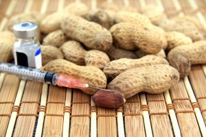 HAL Allergy research on SCIT peanut immunotherapy